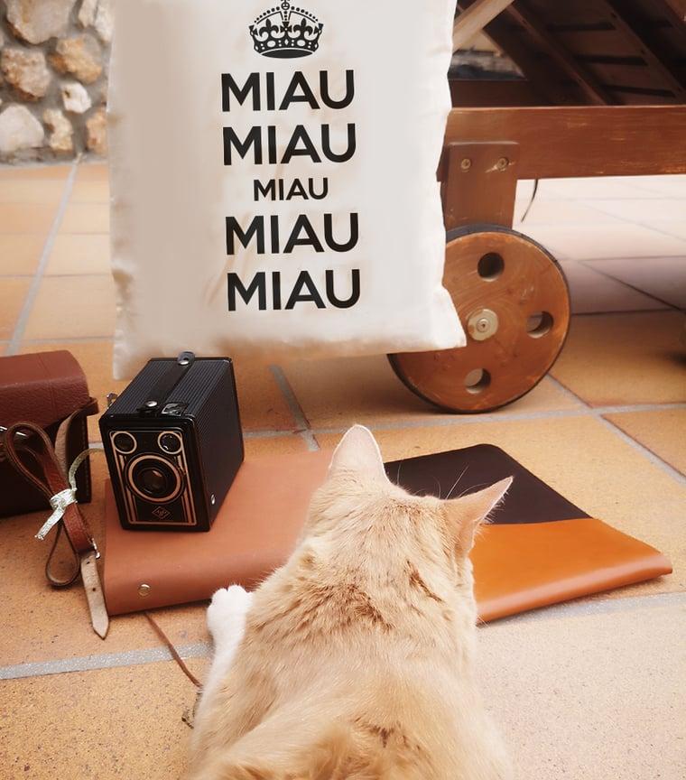 Bolsa Miau Miau