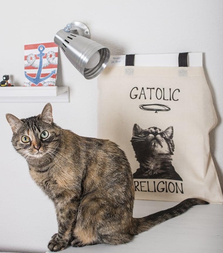 Bolsa Gatolic Religion
